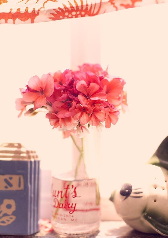 geranium bloom, by lara rossignol