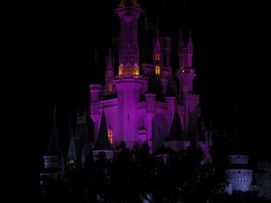 Cinderella Castle at night #DisneyWorld