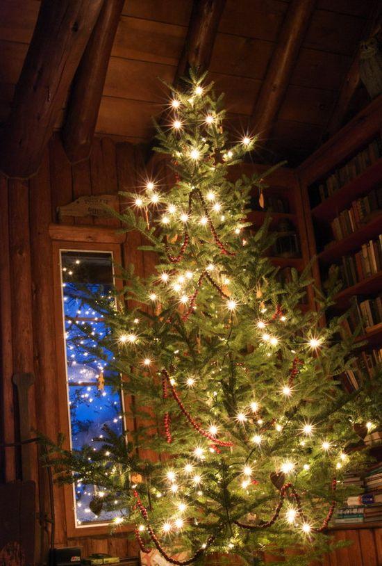 Home for Christmas.../