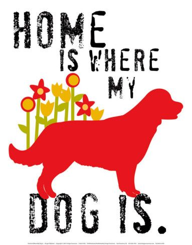 ????Home is where my dog is