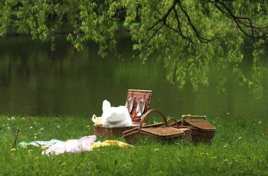 time for a summer picnic