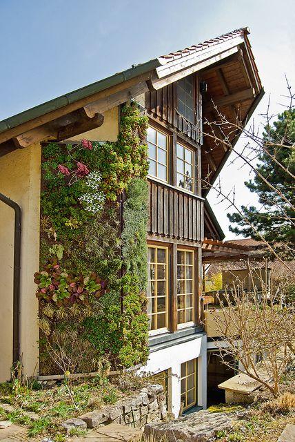 The Munich-based gardener Christian Müß specializes in creating vertical gardens. Learn more about the vertical garden at gartenbau-muess.de/vertikaler-garten-vertical-garden/