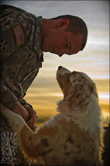 Dog and Soldier ...?
