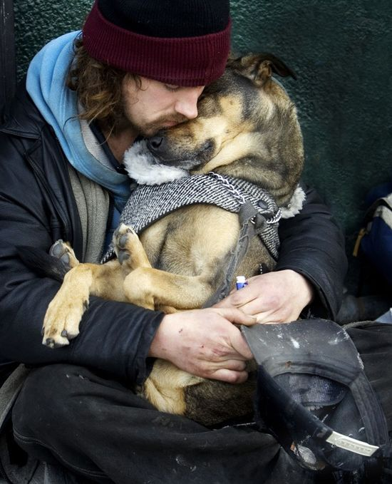 Animal love is the sweetest love.
