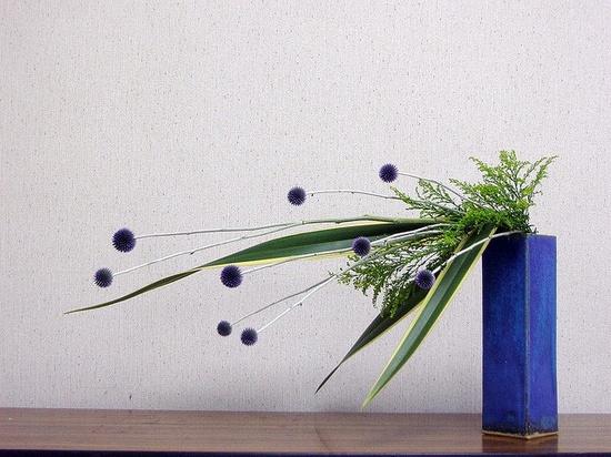 Ikebana by Tel Qel, via Flickr