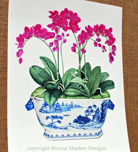 orchids in tureen watercolor