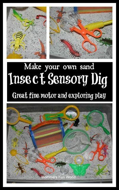 Insect sensory bin play