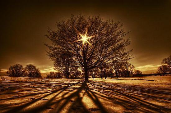 Our sun as a shining star