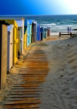 Beach cottages by the sea