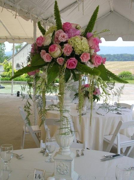 Hydrangea, green, pink, rose