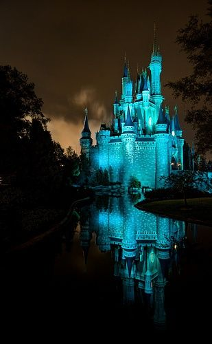 Disney world, cinderella castle