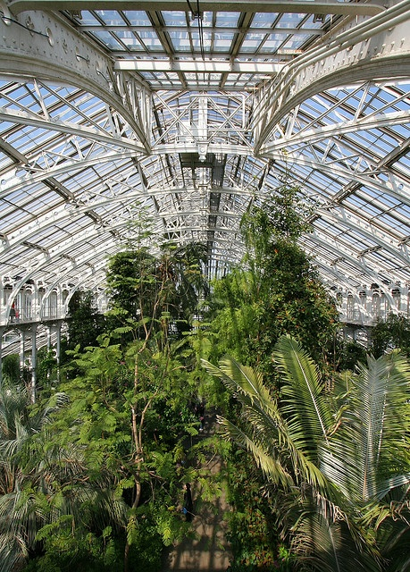 Temperate House, Kew Gardens, interior