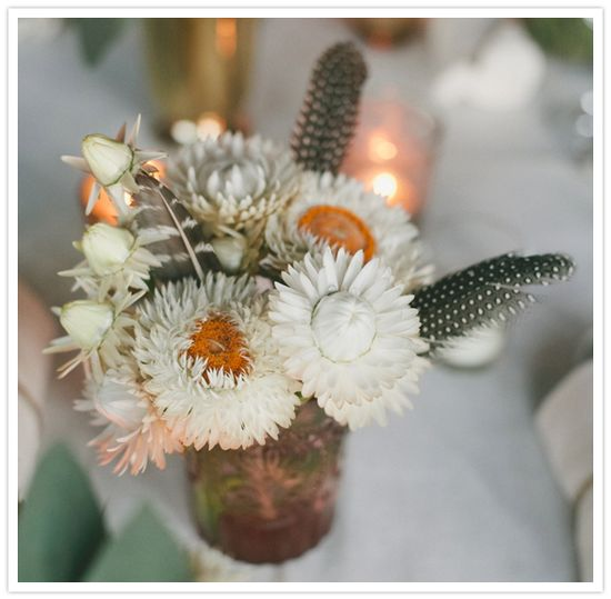 white wild flowers and feathers