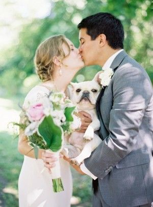the bride, groom, and pooch