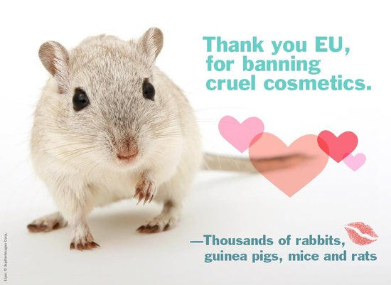 AMAZING! Starting today, all cosmetics tested on animals are BANNED from Europe!