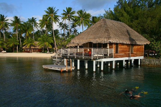 Snorkeling from the comfort of your bungalow, Hotel Bora Bora