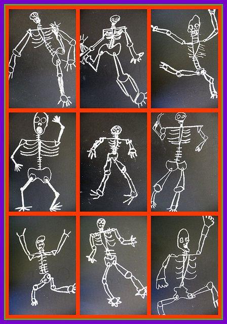 1st grade lotsa bones