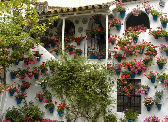 Festival de Patios Cordoba Trueque2 by Ildelop by www.jardinerosenaccion.es, via Flickr