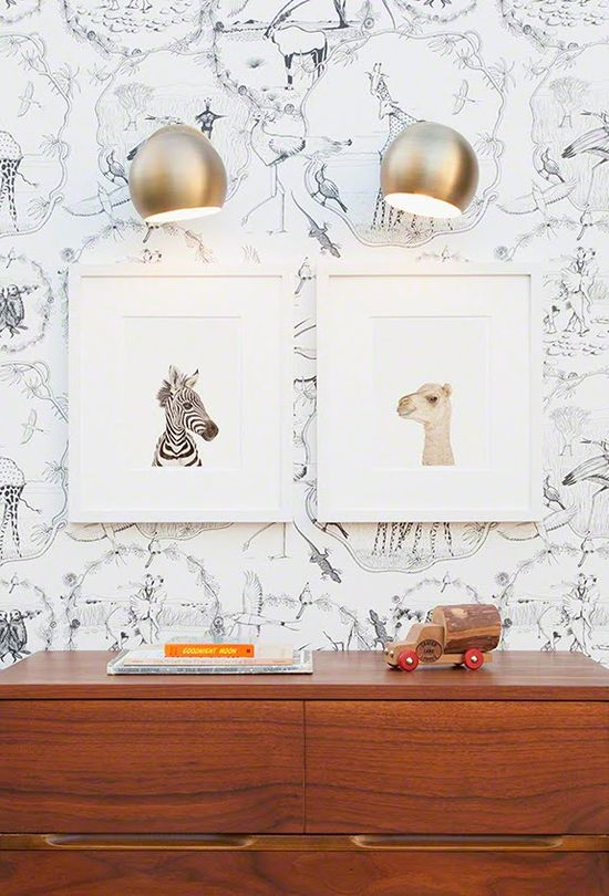 Framed baby animal prints.