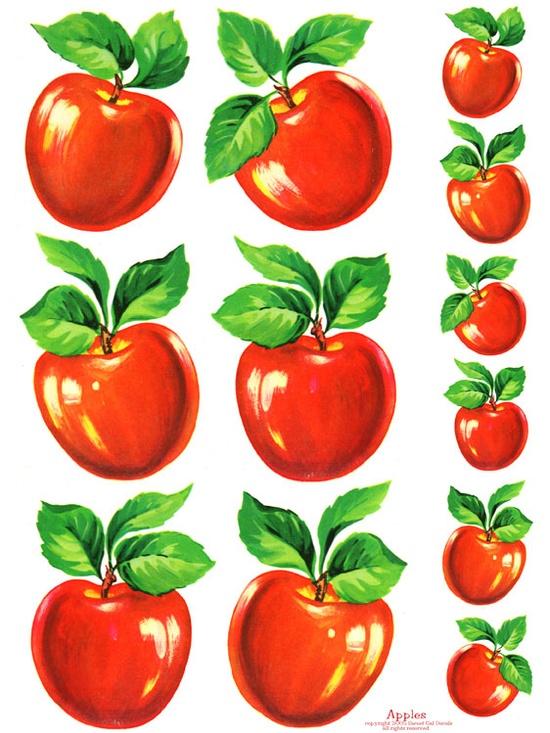 Bright Red Vintage Apples