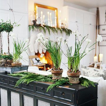 Pots of Paperwhites - ideasforho.me/... -  #home decor #design #home decor ideas #living room #bedroom #kitchen #bathroom #interior ideas