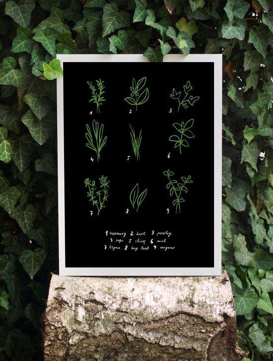 herbs print (etsy shop: anek)