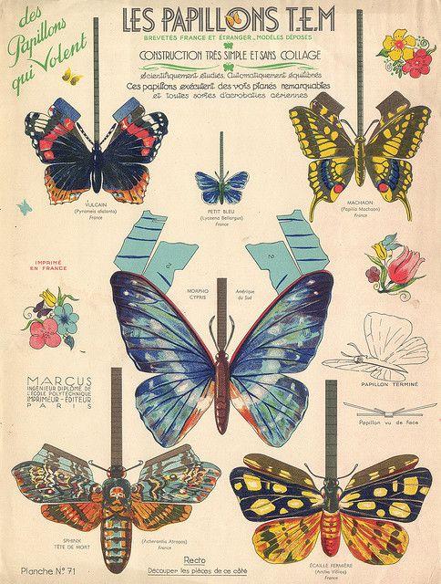 vintage french butterfly ephemera