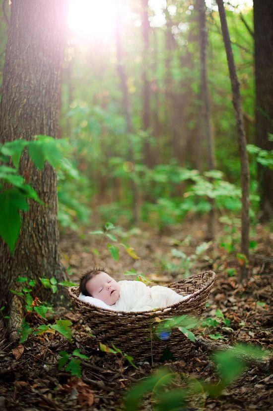 Newborn in a basket . So cute
