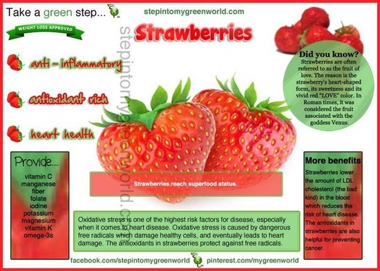 Strawberries Improve the Antioxidant Capacity of Blood