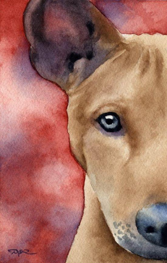 watercolors :)