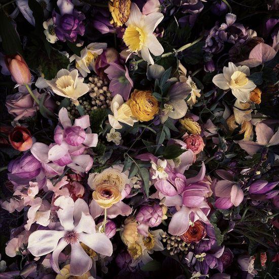 Spring by Little.Flower.School, via Flickr