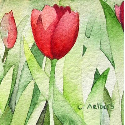 Floral Watercolor - Red Tulips La Conner, Washington