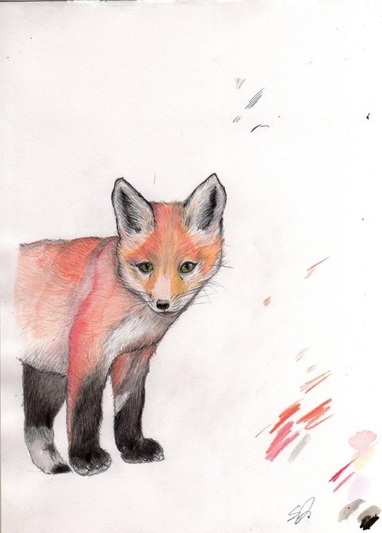 sweet original illustration of a fox cub