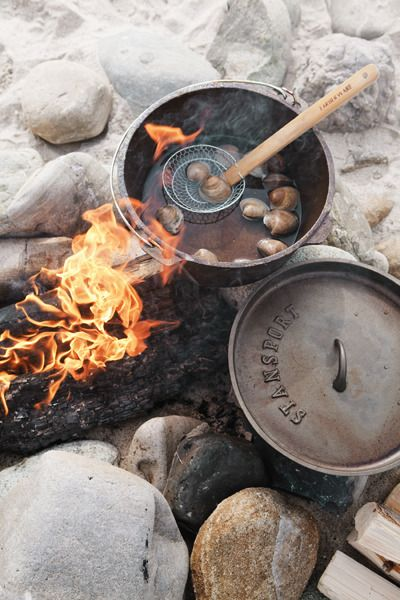 ~ campfire cooking ?