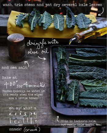 Easy Homesteading: Kale Chip Recipe