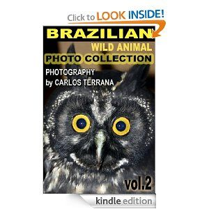 Goes well with our South America Unit Study. Free today 10.17.2013 Brazilian Wild Animal Photo Collection Vol. 2