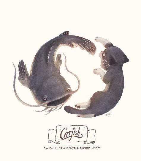 "Charles Santoso, random word doodle, ""Catfish"" ?"