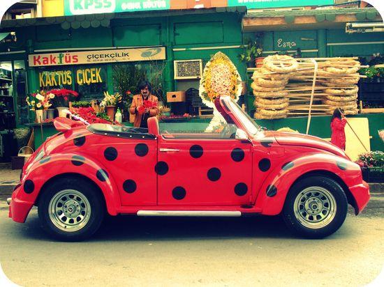 "lady ""bug"" Volkswagen beetle / photo: Esma via flickr #red #dots #car"