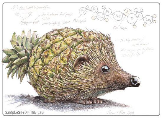 Un petit hérisson '&quot&#x3B;ananas