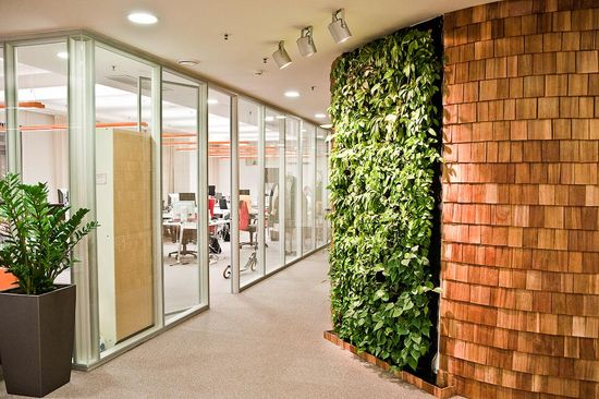 Commercial office green wall x Amazing entrance x Yes please