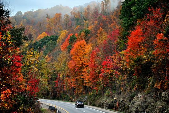 Drive into Autumn ===      West Virginia scene along Interstate 77 south of Charleston.