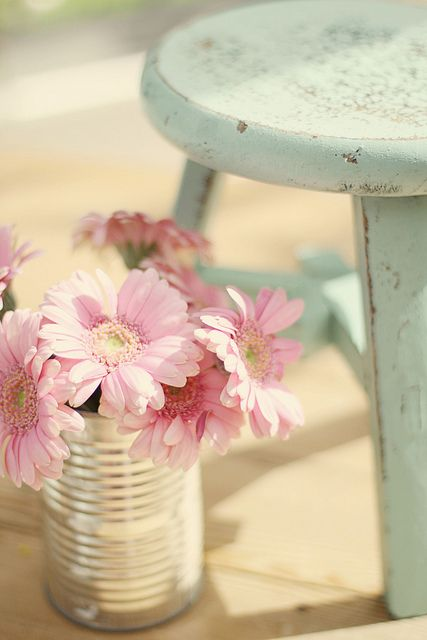 Pink #flowers