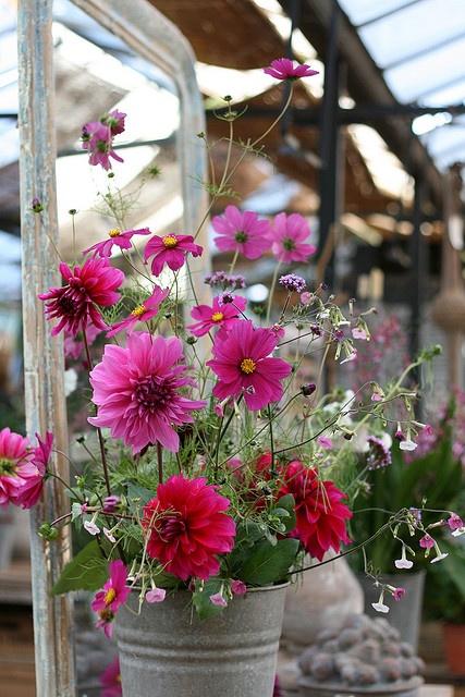 Flowers look pretty in metal buckets.