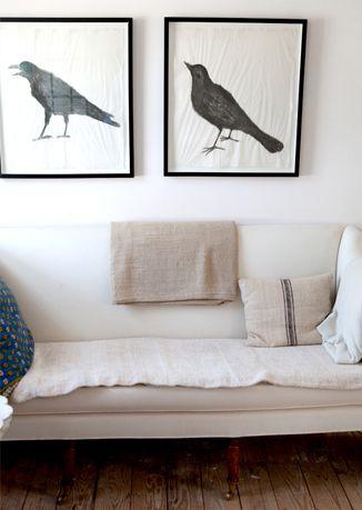 birds in frames at John Derian's home in Cape Cod