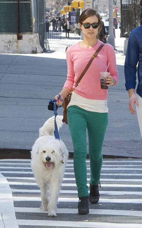 Olivia Wilde - Big Apple Dog Walker