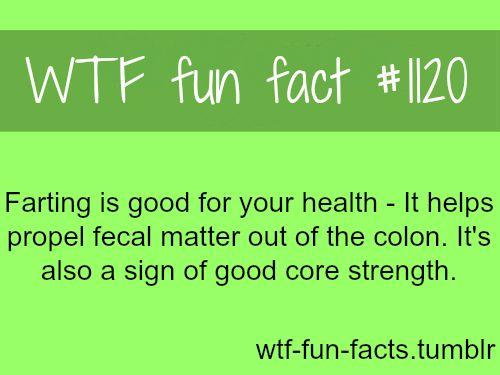 farting facts, health. MORE OF WTF-FUN-FACTS are coming HERE funny and weird facts ONLY