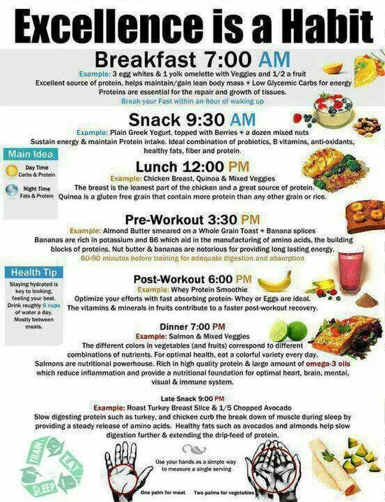 Sample food schedule and foods It would work well if you set your alarm on your phone to remember these times until you got familiar with them..mc