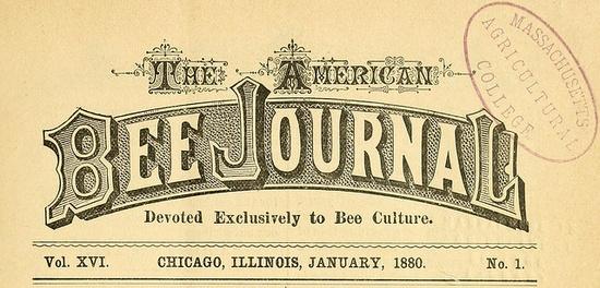 bee journal type