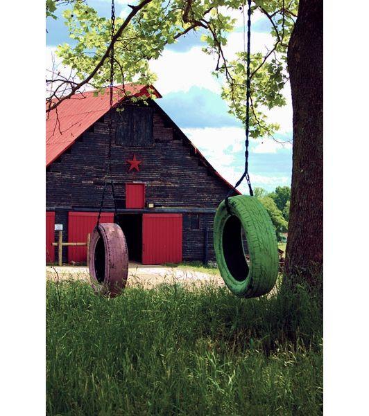 Tire Swings Made Fun - Home and Garden Design Idea's