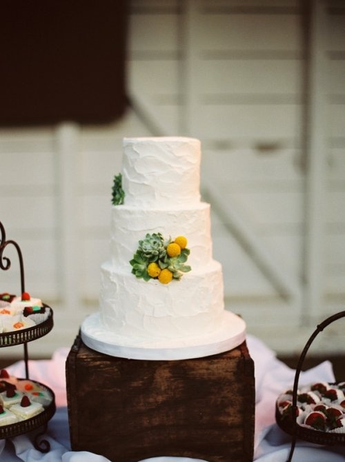 Simple #wedding #cake with #succulents